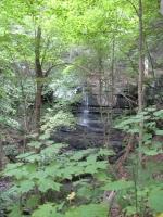 BUTTERMILK FALLS GREEN COUNTY SOUTHERN NEW YORK 8-18-2013_00005.JPG