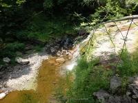 WATUGA FALLS DELAWARE COUNTY CENTRAL NEW YORK 8-10-2014_00019.JPG