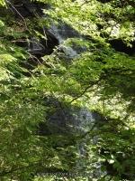 FILMORE dam and hogsback falls_00015.JPG