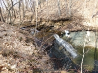 Densmore Falls Monroe County Western New York  4-12-2014_00001.JPG