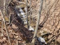 Reds Falls Monroe County Western New York 4-12-2014_00004.JPG