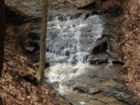 Harrigan's Falls Erie County Western New York 4-13-2014_00003.JPG