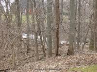 Morganville Falls Genesee County Western New York 4-13-2014_00002.JPG