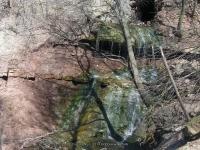 NORTONS FALLS MONROE COUNTY WESTERN NEW YORK 4-17-2009_00003.jpg