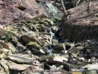 NORTONS FALLS MONROE COUNTY WESTERN NEW YORK 4-17-2009_00004.jpg