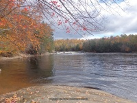 Double Drop IV Rapids Moose 10-17-2015_00012.JPG