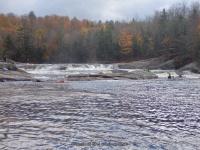 Double Drop IV Rapids Moose 10-17-2015_00016.JPG