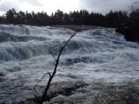 Fowlersville Lower Falls 10-17-2015_00001.JPG