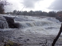 Fowlersville Lower Falls 10-17-2015_00007.JPG