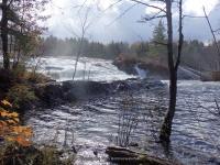 Fowlersville Lower Falls 10-17-2015_00015.JPG