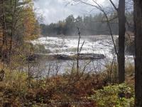 Fowlersville Lower Falls 10-17-2015_00017.JPG