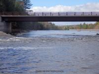 Fowlersville Bridge Rapids 10-17-2015_00006.JPG