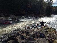 Knifes Edge Rapids Moose 10-17-2015_00011.JPG