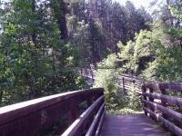 Mcclintock Falls Marienette County WI 7-5-2007_00006.jpg