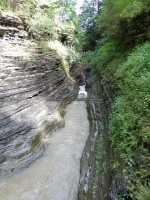 Minihaha Falls Watkins Glen Schuyler Central NY 8-10-2013_00010.JPG