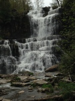 Chittenango Falls 5-14-2016_00012.JPG