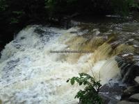 Wilsey Creek falls on MHLC Montgomery Ny 5-30-2016_00007.JPG
