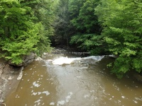 Wilsey Creek falls on MHLC Montgomery Ny 5-30-2016_00013.JPG