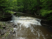 Wilsey Creek falls on MHLC Montgomery Ny 5-30-2016_00014.JPG