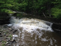 Wilsey Creek falls on MHLC Montgomery Ny 5-30-2016_00015.JPG