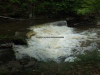 Wilsey Creek falls on MHLC Montgomery Ny 5-30-2016_00017.JPG