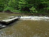 Wilsey Creek falls on MHLC Montgomery Ny 5-30-2016_00018.JPG