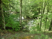 Wilsey Creek falls on MHLC Montgomery Ny 5-30-2016_00019.JPG