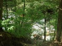 Wilsey Creek falls on MHLC Montgomery Ny 5-30-2016_00020.JPG