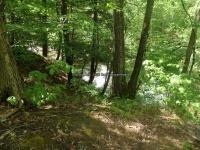 Wilsey Creek falls on MHLC Montgomery Ny 5-30-2016_00021.JPG