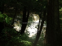 Wilsey Creek falls on MHLC Montgomery Ny 5-30-2016_00022.JPG