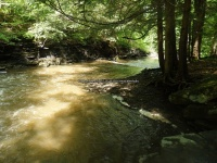 Wilsey Creek falls on MHLC Montgomery Ny 5-30-2016_00025.JPG