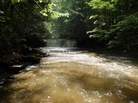 Wilsey Creek falls on MHLC Montgomery Ny 5-30-2016_00029.JPG