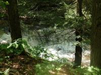 Wilsey Creek falls on MHLC Montgomery Ny 5-30-2016_00030.JPG