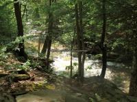 Wilsey Creek falls on MHLC Montgomery Ny 5-30-2016_00031.JPG