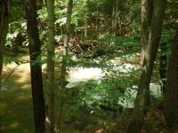Wilsey Creek falls on MHLC Montgomery Ny 5-30-2016_00034.JPG
