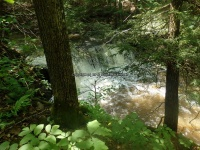 Wilsey Creek falls on MHLC Montgomery Ny 5-30-2016_00036.JPG