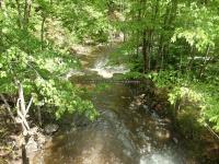 Wilsey Creek falls on Montgomery Ny 5-30-2016_00006.JPG