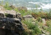 Three Sisters Islands views from 7-6-2016_00031.JPG
