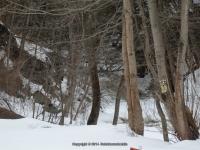 Muitzes Kill Falls Rensselaer County Eastern New York 2-23-2014_00002.JPG