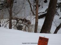 Muitzes Kill Falls Rensselaer County Eastern New York 2-23-2014_00003.JPG